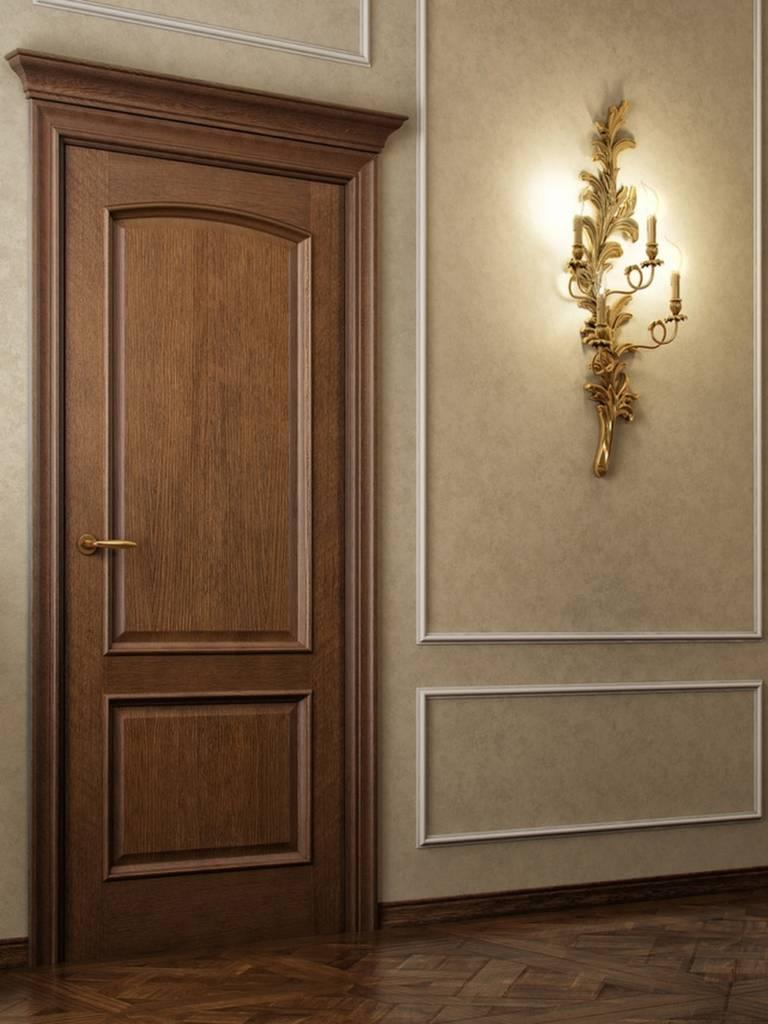 тёмные двери в интерьере